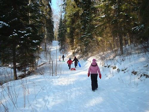 Nelijärve terviserajad / health, hiking, cycling trails
