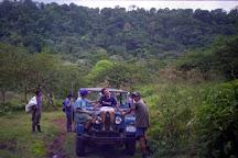 Refugio de Vida Silvestre Bosque Alegre, Tirimbina, Costa Rica