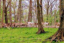 Pymatuning Deer Park, Jamestown, United States