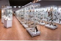 Museo del Calzado, Mexico City, Mexico