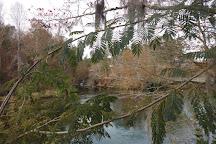 Savannah Rapids Park, Martinez, United States