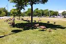Port Credit Memorial Park