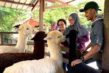 Farm In The City, Sri Kembangan, Malaysia