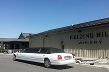 Lakeside Limousine Tours, Chelan, United States