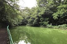 Musashiseki Park, Nerima, Japan