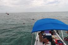 Caveman Snorkeling Tours, Caye Caulker, Belize