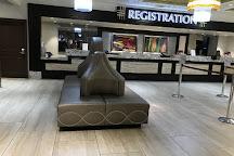 Casino at the California Hotel, Las Vegas, United States