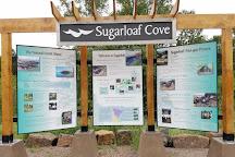 Sugarloaf Cove Nature Center, Schroeder, United States