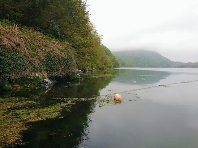 Lough Hyne