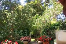 Floradale Nurseries, East London, South Africa