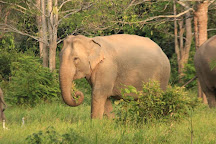 Kui Buri National Park, Prachuap Khiri Khan Province, Thailand