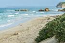 Seal Bay Conservation Park