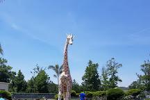 Funland Amusements, Chincoteague Island, United States