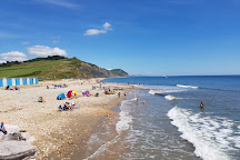 Charmouth Heritage Coast Centre, Charmouth, United Kingdom