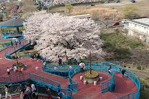 Nakagawa Riverside Park, Nasushiobara, Japan