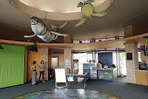 Waikiki Aquarium, Honolulu, United States