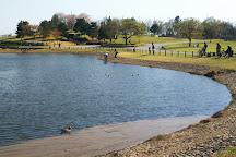 Musashinonomori Park, Fuchu, Japan