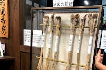 Kyoto Insider Sake Experience, Kyoto, Japan