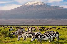 Wild Peak Adventures, Nairobi, Kenya