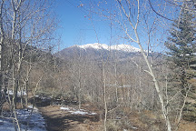 Twin Lakes, Leadville, United States