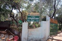 RAJENDRA GIRI, Pachmarhi, India
