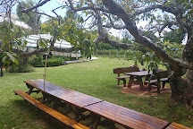 Witches Falls Winery, North Tamborine, Australia