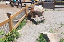 Living Treasures Animal Park, Jones Mills, United States