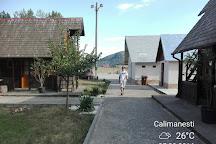 Turnu Monastery, Calimanesti, Romania