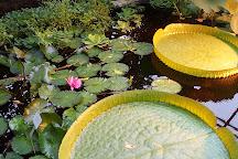 Kiel Botanical Gardens, Kiel, Germany