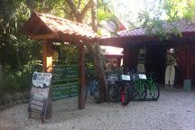 The Frog Pad, Nosara, Costa Rica
