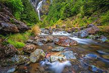Waitonga Falls Walk Trailhead, Ohakune, New Zealand
