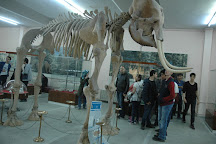Natural History Museum, Izmir, Turkey