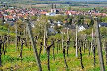 Weingut Jagle, Kenzingen, Germany
