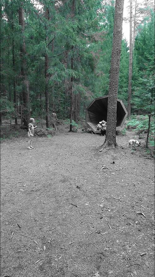 Metsa Kõlakojad