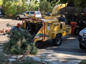 Reinholt Tree Care Inc.