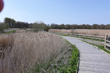Visit Sculthorpe Moor Nature Reserve On Your Trip To Fakenham