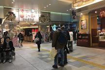 Matsue International Tourist Information Center, Matsue, Japan