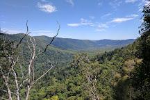 Gold Coast Hinterland Great Walk, Lamington National Park, Australia
