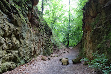Megyer-hegy Tarn, Sarospatak, Hungary