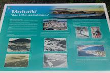 Moturiki Island, Mount Maunganui, New Zealand