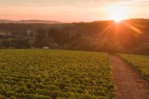 Raptor Ridge Winery, Newberg, United States