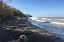Lake Erie Bluffs, Perry, United States