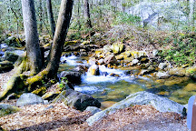 Jones Gap State Park, Marietta, United States