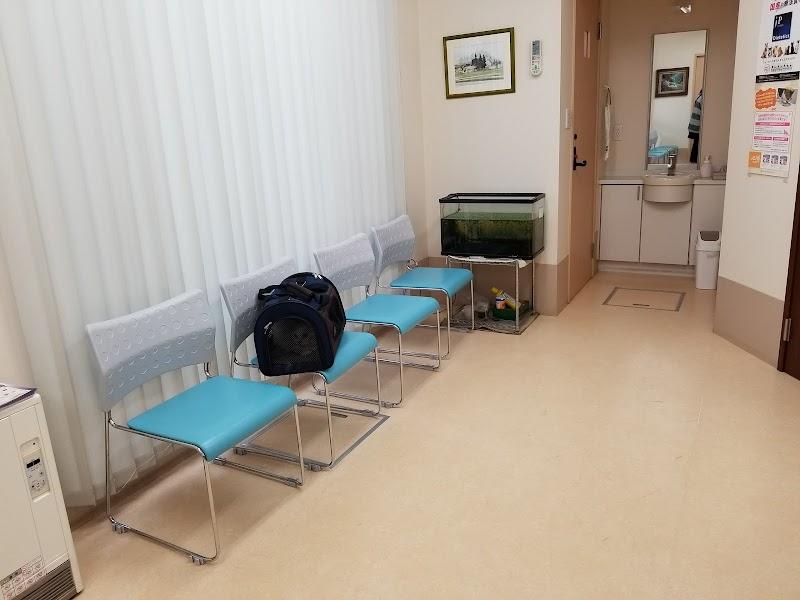 いとう動物病院