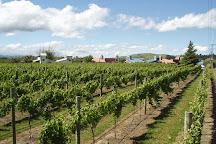 Margrain Vineyard, Martinborough, New Zealand