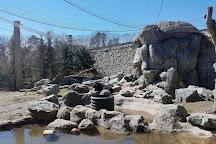 Stone Zoo, Stoneham, United States