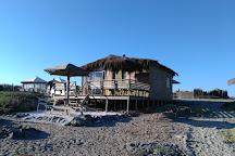 Punta Choros, La Serena, Chile