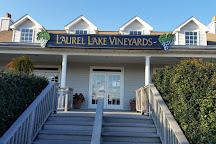 Laurel Lake Vineyard, Laurel, United States