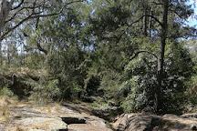 Towarri National Park, Wingen, Australia