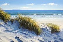 Moko Artspace, Hot Water Beach, New Zealand